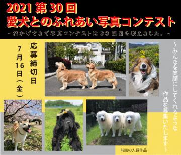 aaaa2021 愛犬とのふれあい写真コンテスト