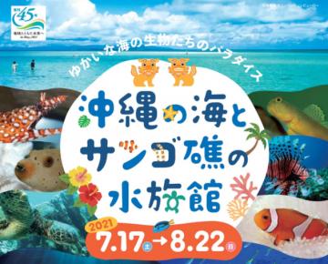 aaaa沖縄の海とサンゴ礁の水族館SNSフォトコンテスト