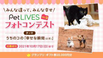 aaaaPetLIVESフォトコンテストvol.9 愛犬・愛猫の「幸せな瞬間」を募集します!