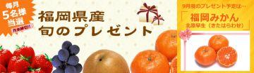 aaaa福岡県農林水産物ブランド化推進協議会 クイズ&プレゼント