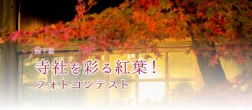 aaaa第7回 寺社を彩る紅葉!フォトコンテスト