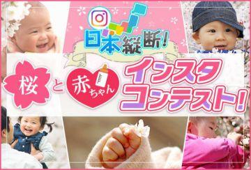 aaaa第2回 日本縦断!【桜と赤ちゃん】インスタコンテスト