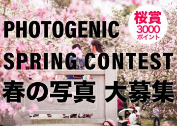 aaaaPHOTOGENIC SPRING PHOTO CONTEST