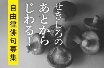 aaaa公募ガイド「せきしろの自由律俳句」第29回募集