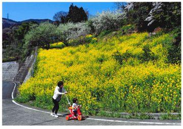 aaaa毛呂山町 第1回観光フォトグランプリ