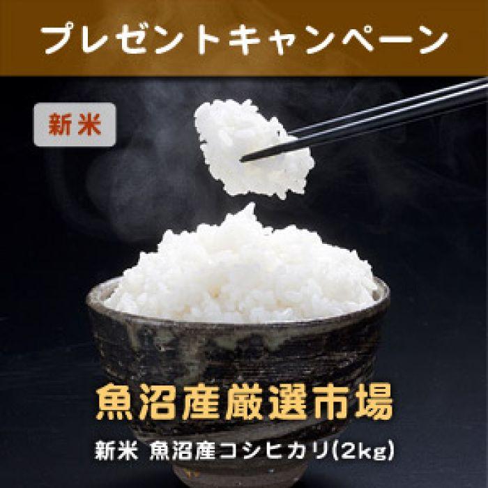 魚沼産コシヒカリ(2kg) お米プレゼント!