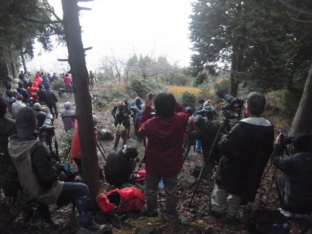 竹田城を撮る人を撮る。 登山道から藪の中まで、ずーっとカメラをかまえた人だらけ。 朝も早くから皆さんとても熱心なのです。