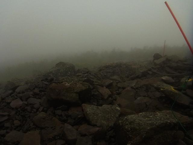 しかも、山行中はずっとガスがかかっている状態。 なにも見えません。