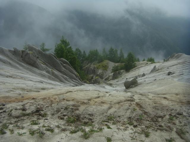 崖を覗き込むと、こんあ状態になっています。 どこまでも砂浜が続く、ゆるやかな崖なのです。