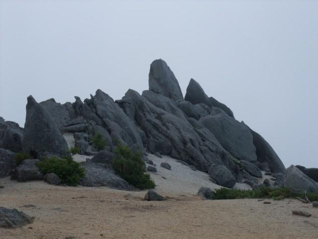 山頂は広い。 どっちを見てもこんな景色。 なんか、山に来たっ!て感じがします。