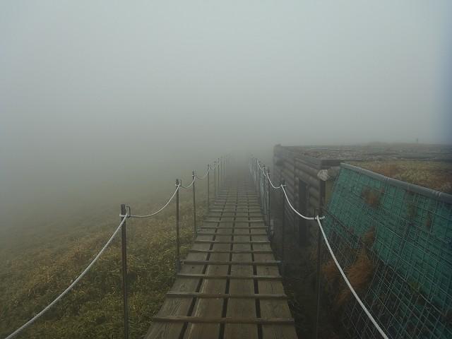 歩き始めたけど、何も見えん。 とにかく稜線上の景色が美しいことで知られる山なんですけどねぇ。
