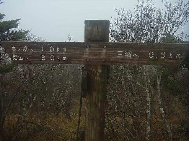 半分くらい来たかな。 三嶺まであと9km。