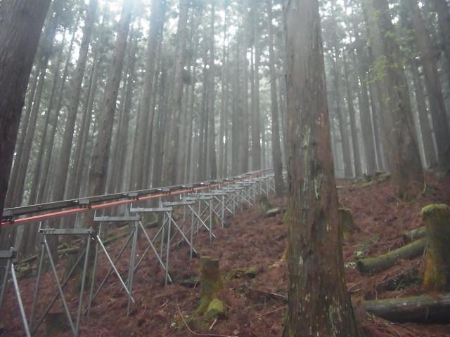途中、こんな建造物を発見。 林業用の森林軌道かな?