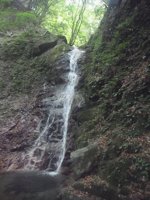 滝その2。 といっても、ここへたどり着くの、けっこう大変なんですよ。
