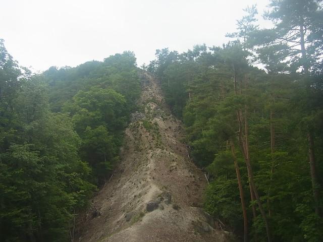 これ、登ります。 壁? しかも砂地で、足元がどんどん崩れていく。