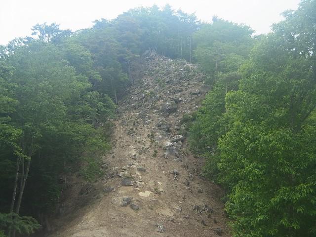 さらにこれも登らなきゃいけない。 崖?