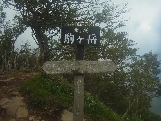 まず到着したのが、駒ケ岳。