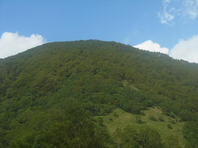これを登ったら山頂です。