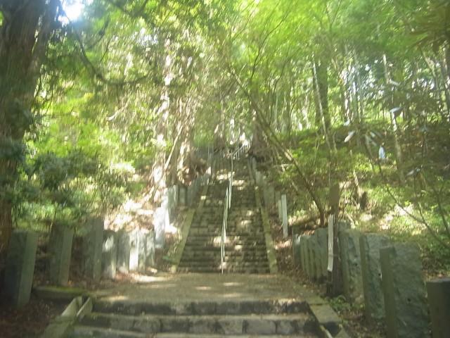 最初は神社の境内らしく、ずっと整備された階段。