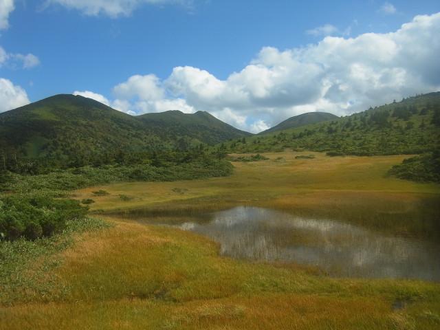 見事な湿原が見えてきました。
