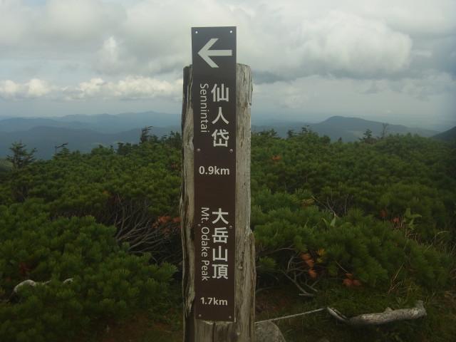 さて、メインイベントの大岳に向かいます。 この前に、小岳に登ったのですが。 写真を撮り忘れた。