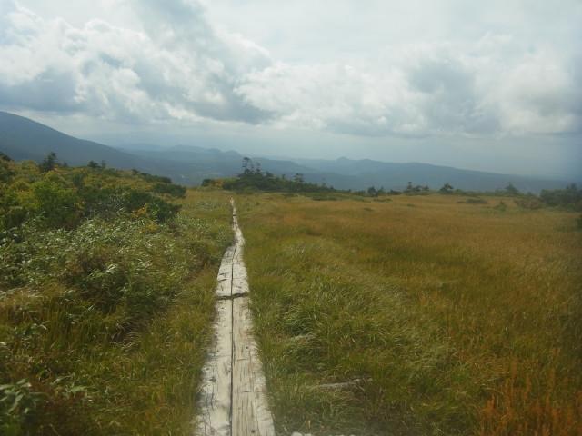 藪を過ぎると、どこまでも続く木道。 毛無岱(けなしたい)と呼ばれる、広大な湿原です。