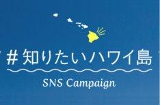SNSに投稿「知りたいハワイ島キャンペーン」開催中