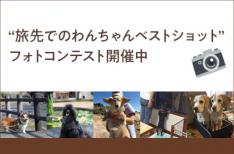 「旅先でのわんちゃんベストショット」フォトコンテスト